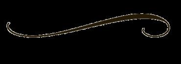 decorative-line-black-transparent